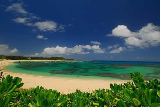 観光 奄美 大島 奄美大島のベストシーズンは?一度は行っておきたい!人気観光スポット情報 【ハックルベリーツアーガイド】